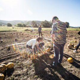 Australian Pumpkin Seed Company Sharan Rivett